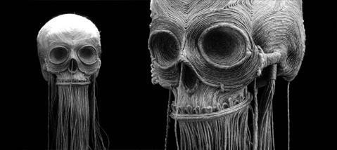 jim-skullgallery_03.jpg