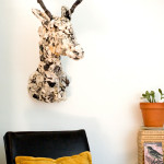DIY taxidermy by Mollie Greene