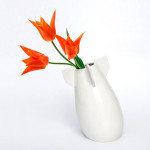 The Peaceful Bomb Vase