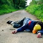 Nigel Grimmer's Roadkill Family Album