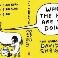 shrigley-book