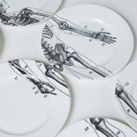 skeleton-plates-01