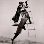 Photo of the day: Batman vs a shark