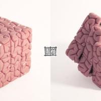 BrainCube1000