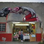 Roa in Mexico