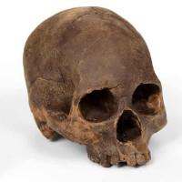 chocolate-skull