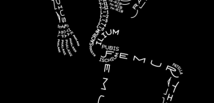 SkeletonTypogram_AaronKuehn_1080-698x1024