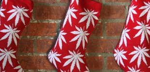 huf_plantlife_stocking_xmas_1024