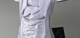 paper-torso1