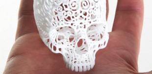 Joshua Harker - Crania Anatomica
