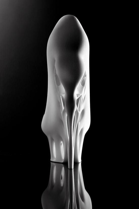 Biomimicry-Shoe-03
