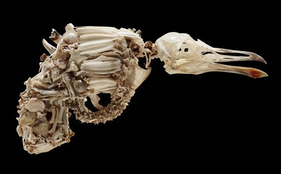 bone pistol_03