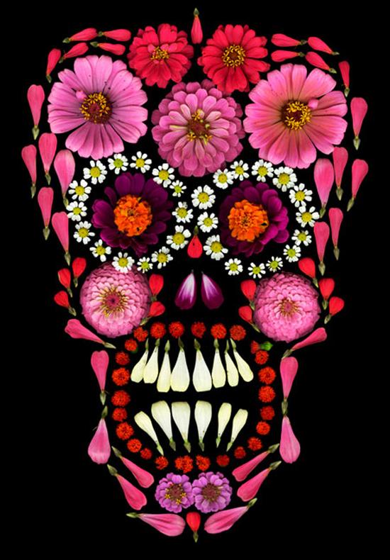 skull flower_01