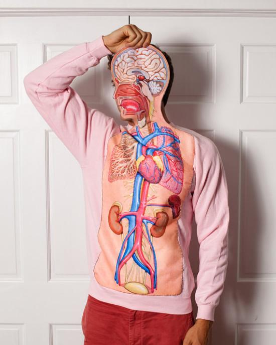 Body Anatomy Science Teacher