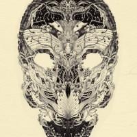 Anacridium_skull-etude-no1-600x825.jpg