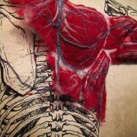 anatomy-1.jpg