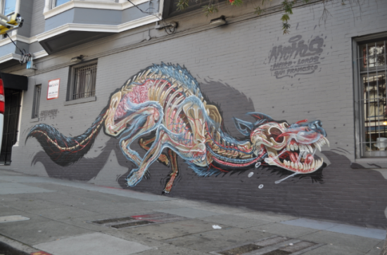 5 Nychos_x-ray of a wolf_ Haight Ashbury SF 2014 Photo byRabbiteyemovement