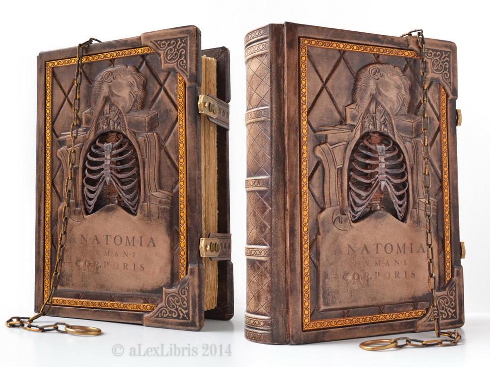 Anatomia Humani Corporis