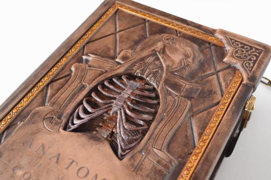 anatomybook4