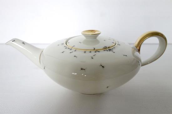ants-4